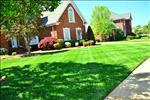 A Plus Lawn Care Augusta GA